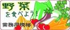 【産地直送JAタウン】大野菜箱