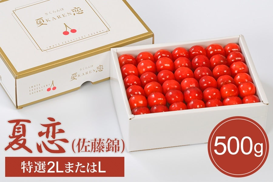 【予約】さくらんぼ「夏恋」(佐藤錦) 500g