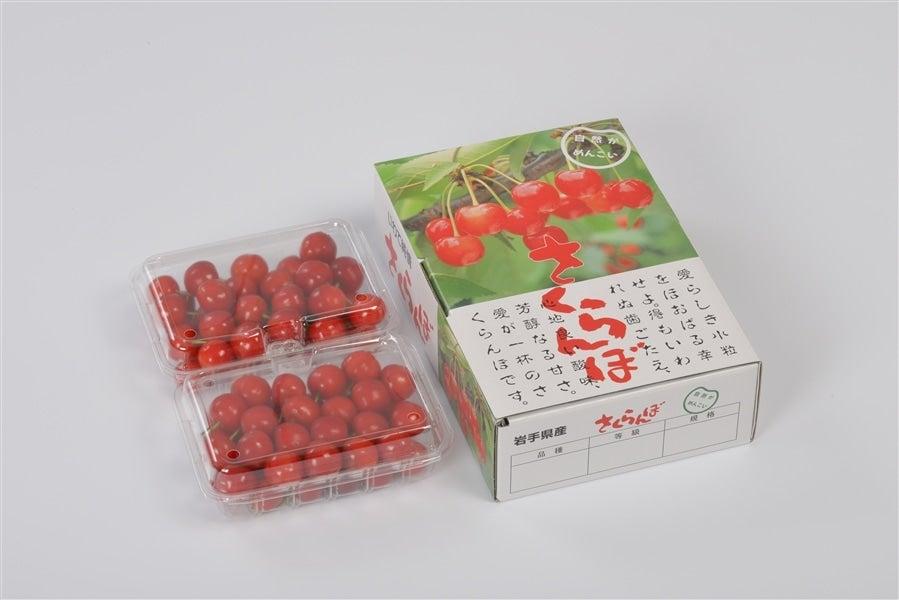 【おうちごはん】【予約】さくらんぼ「佐藤錦」700g(350g×2パック)