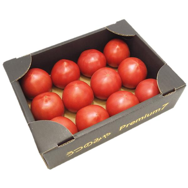 Premium7 トマト (約1.2kg×1箱) JAうつのみや産