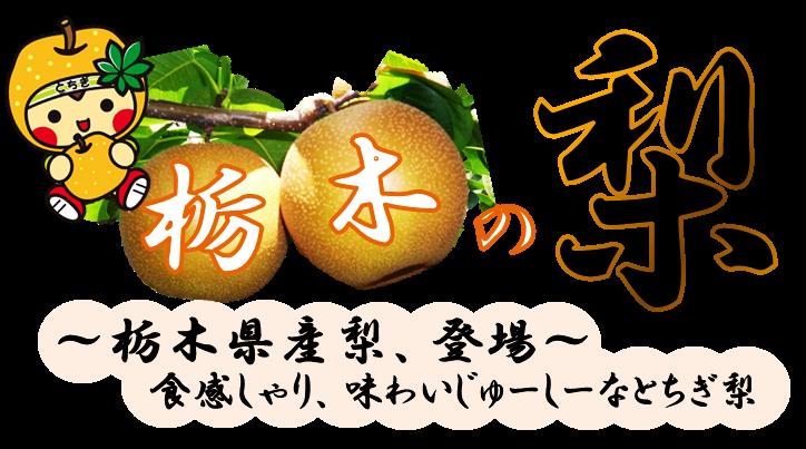 とちぎの梨