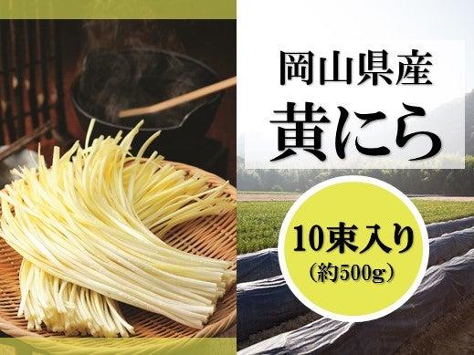 産地直送 通販 お取り寄せ岡山県産 黄にら 10束入り: おいしいおかやま|JAタウン