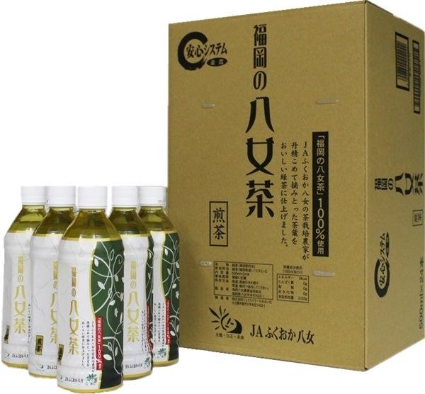 福岡の八女茶 煎茶ペットボトル