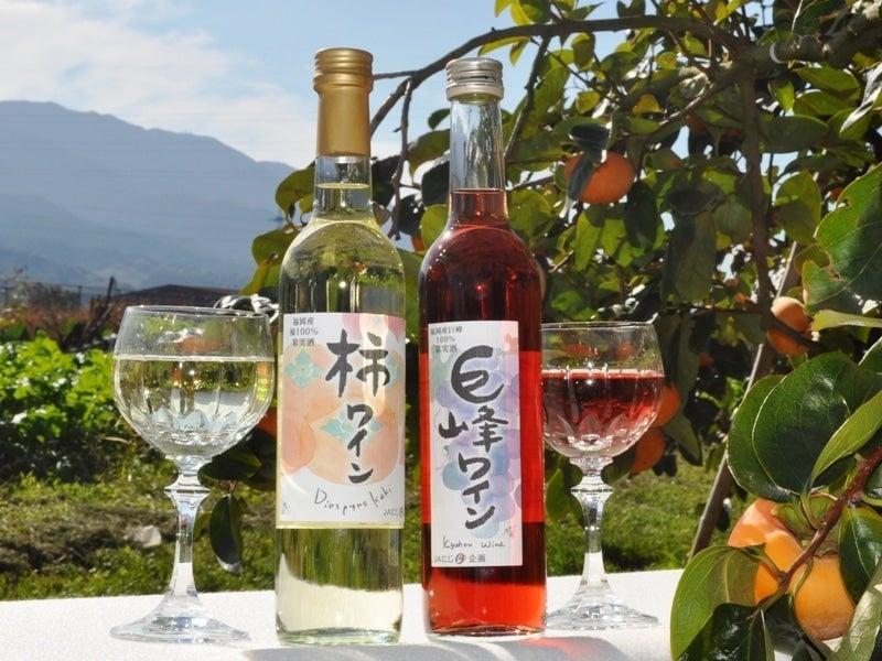 【贈答にも】JAにじオリジナル 巨峰ワイン・柿ワインセット