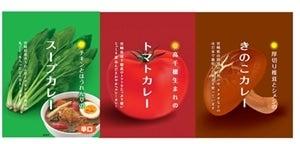 宮崎の野菜カレー食べ比べセット