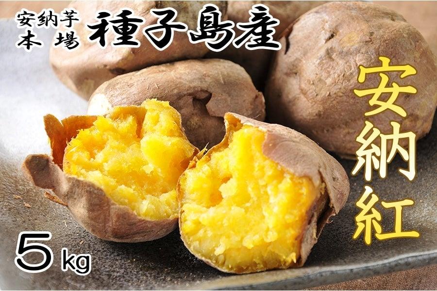 <産地直送JAタウン> 毎年大好評☆JA種子屋久産 安納紅(安納芋)   約5kg