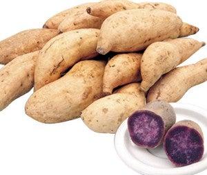 <産地直送JAタウン> 【紫芋の中でも特に甘い♪】JA種子屋久 種子島紫 約3kg