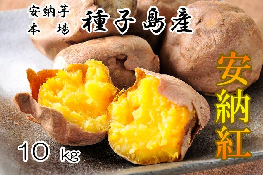 <産地直送JAタウン> 毎年大好評☆JA種子屋久産 安納紅(安納芋)   約10kg