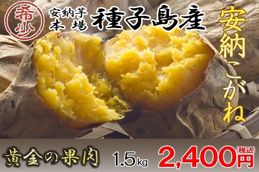 <産地直送JAタウン> 【新登場!!】JA種子屋久産 安納こがね(安納芋)   約1.5kg