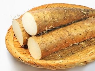 自然薯/長いも/山芋など
