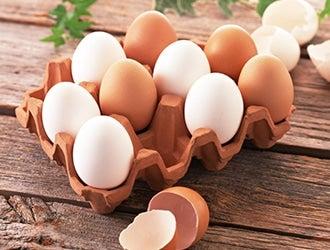 卵・卵加工品