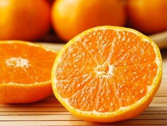 みかん・柑橘